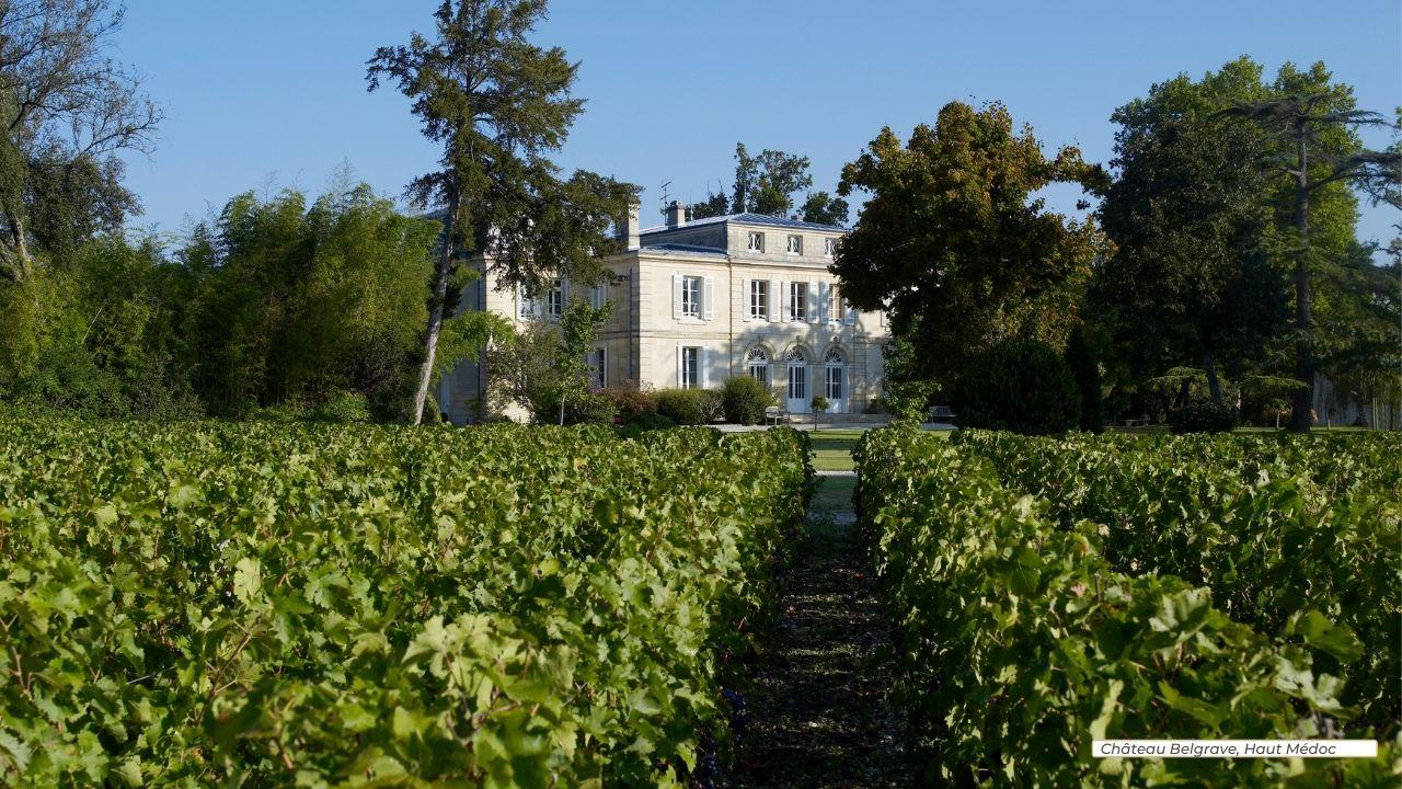 Arvitis_Vignobles_560 ha_Bordeaux_Chateau Belgrave